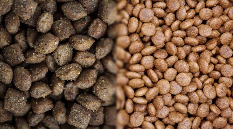 Nutro vs Taste of the Wild