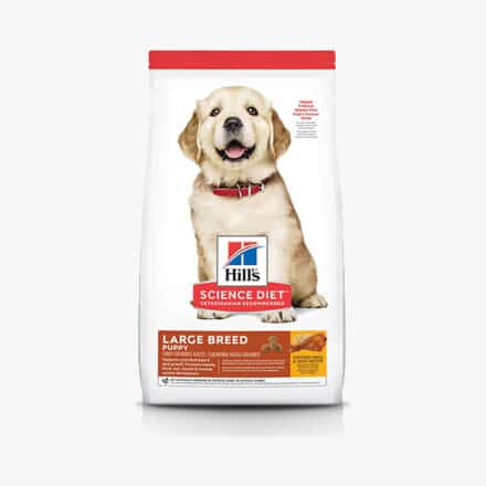 Science Diet Giant Puppy Food